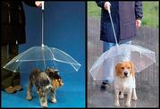 Парасолька для собак і кішок,  продам парасольку для тварин